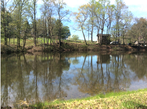 This lake is located at the bottom of the hill from the cabin.